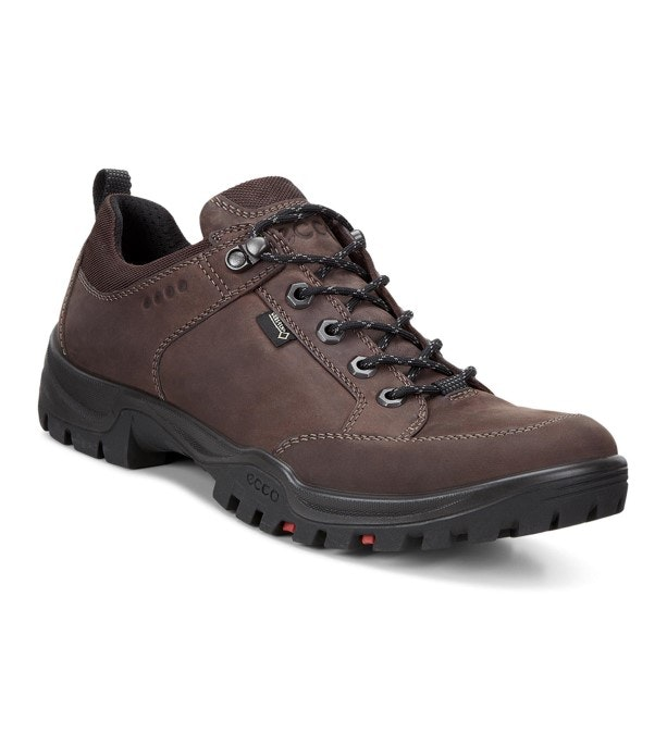 ECCO Xpedition III Torre GTX - Durable, low cut, waterproof boot.